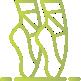 ícone verde para simbolizar o ballet funcional